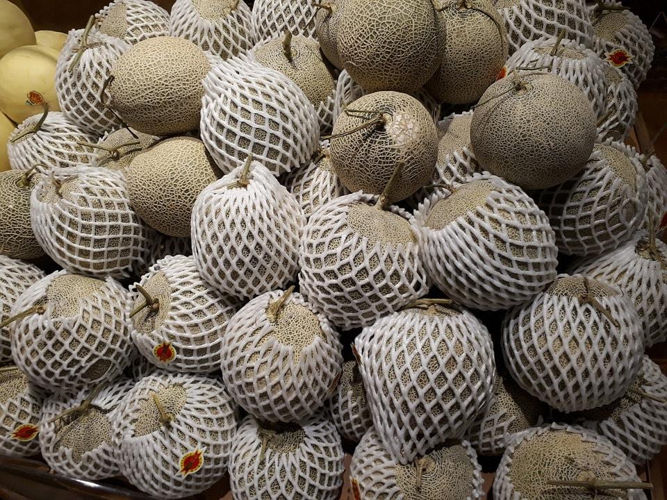 gruppo di meloni